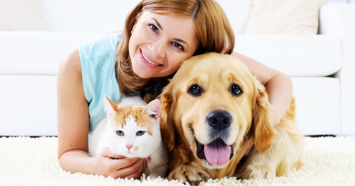 Picture for category pet care