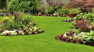 Picture for category Gardening & Lawn Care