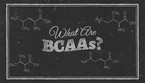Picture for category BCAAs